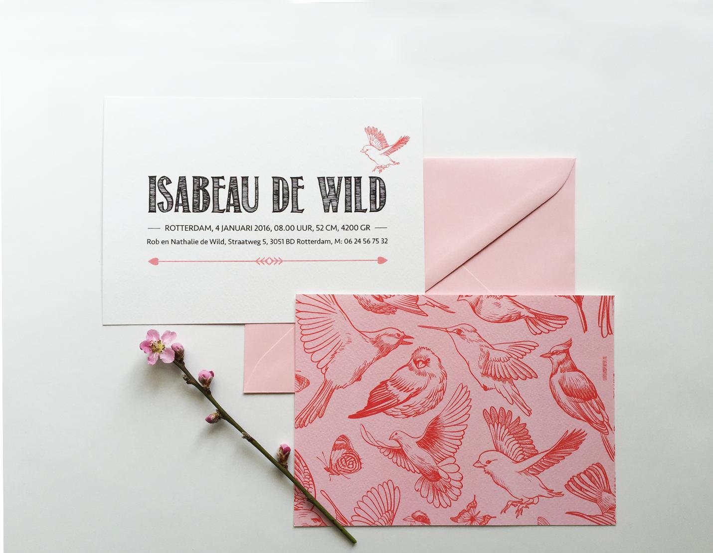 geboortekaartje vogels met roze envelop