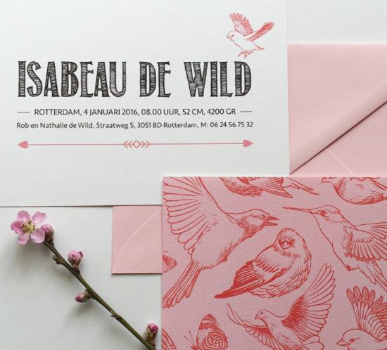 A5 liggend geboortekaartje wit met roze en rode vogels